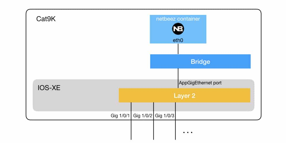 How to Run NetBeez Agents on Cisco Catalyst 9000 Series Switches