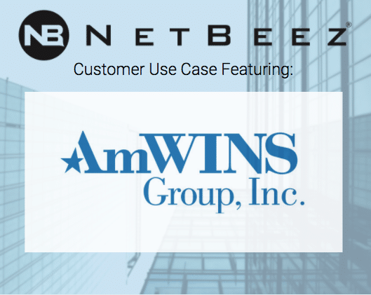amWINS_Case study download