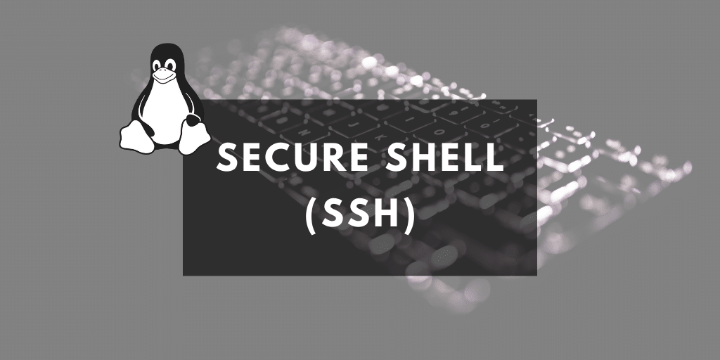 remote ssh commands