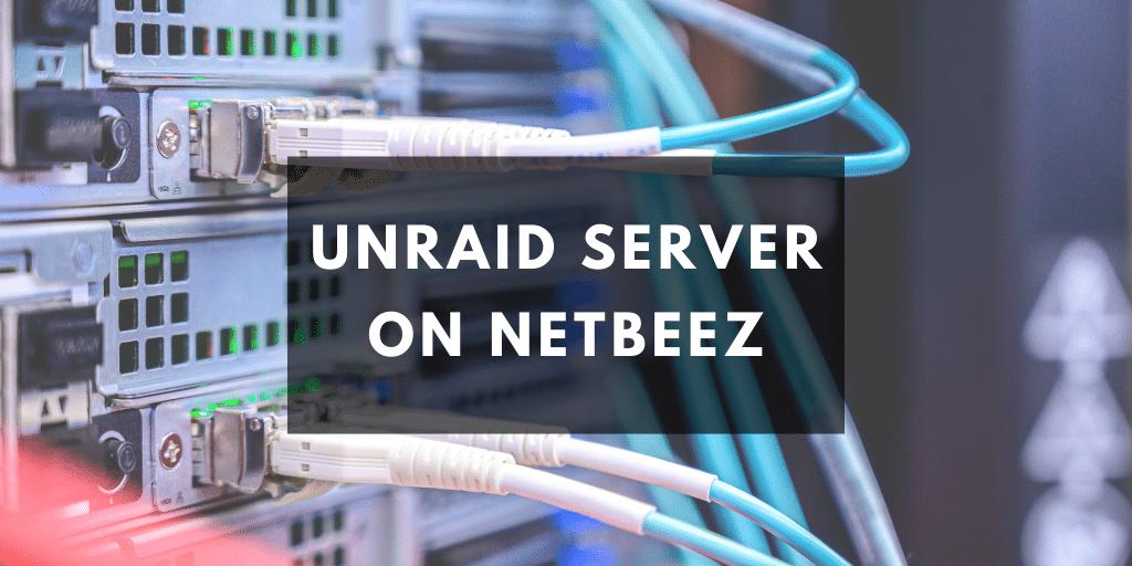 unraid netbeez
